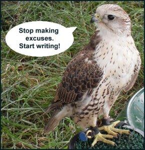 Bird Advice 5